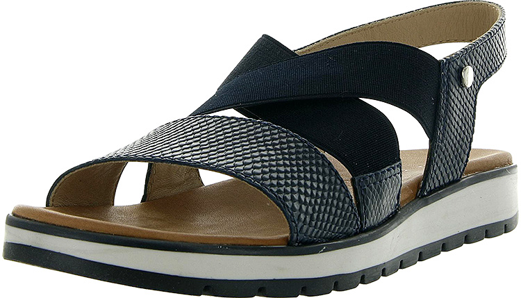 Coast 49089 Reptile Blue