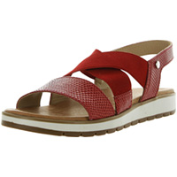 Coast 49089 Reptile Red